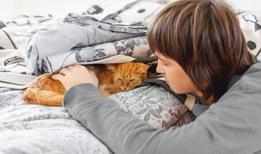 למה החתול שלך בסטרס ואיך אפשר לעזור לו